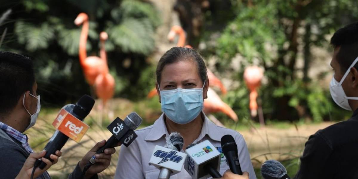 Zoológico de Cali recibió millonario apoyo para garantizar bienestar de los animales