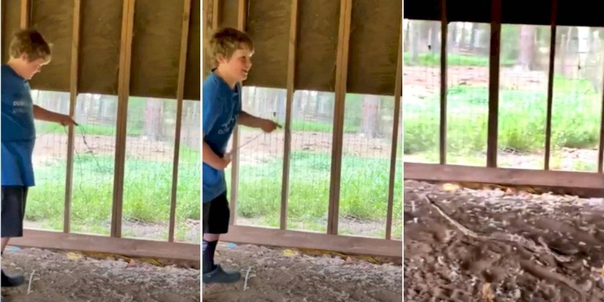 Vídeo viral surpreende ao mostrar criança 'laçando' cobra