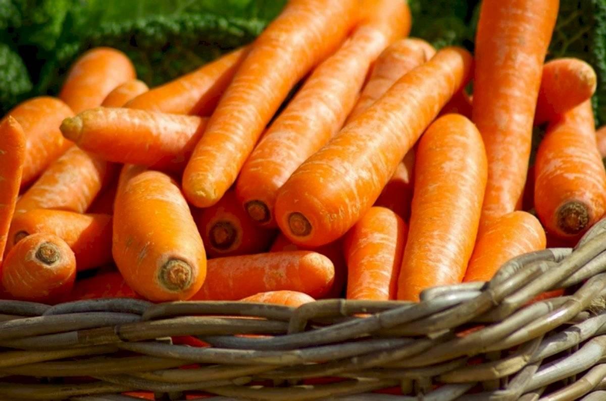 Estas son las vitaminas y calorías que aporta la zanahoria