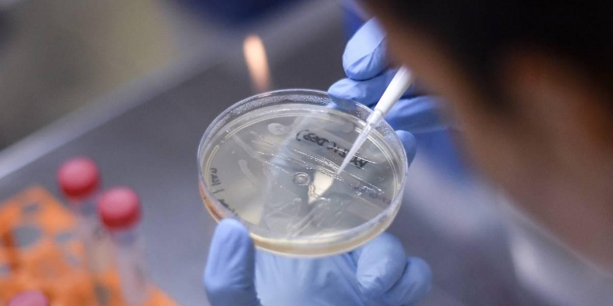 Uno de cada cinco infectados de coronavirus no presenta síntomas, según estudio
