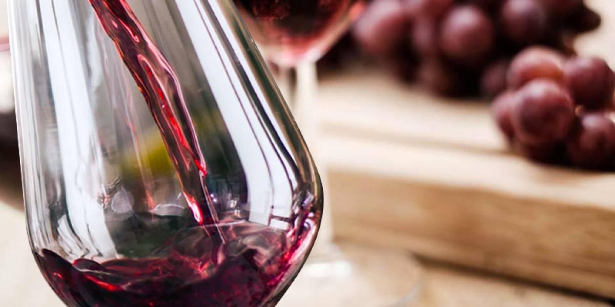 5 filmes para amantes de vinho