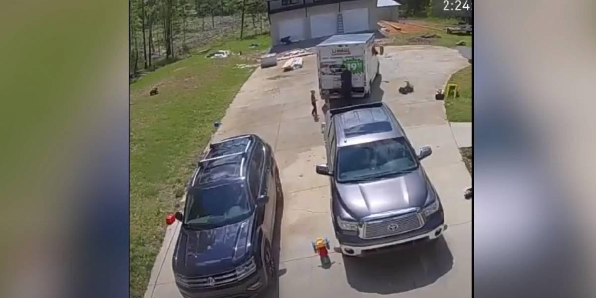 Vídeo captura momento em que criança de 4 anos é mordida por cascavel