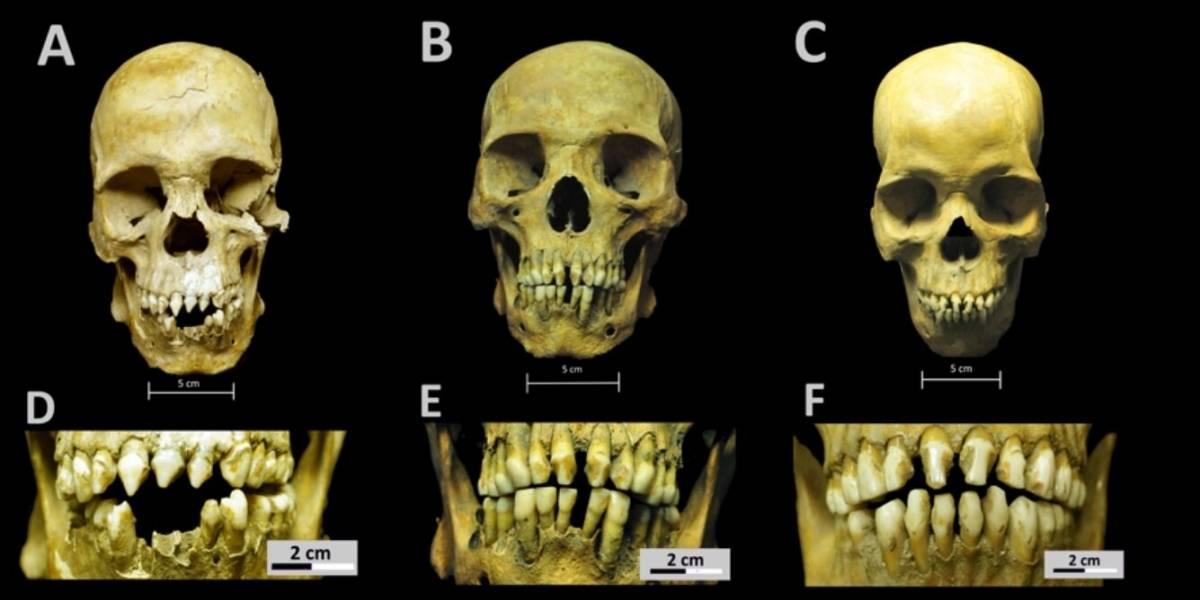 Ciencia.-Esqueletos africanos del México colonial cuentan la vida de los esclavos