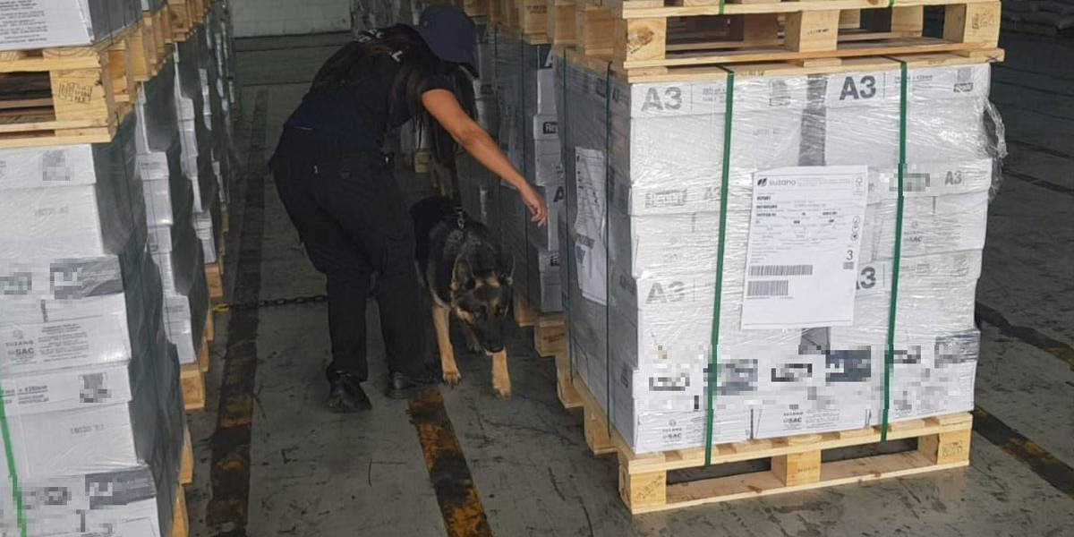 Receita Federal apreende 370 quilos de cocaína no Porto de Santo