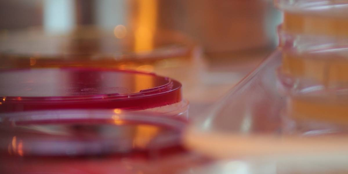 FDA emite autorización de uso de emergencia para posible tratamiento COVID-19