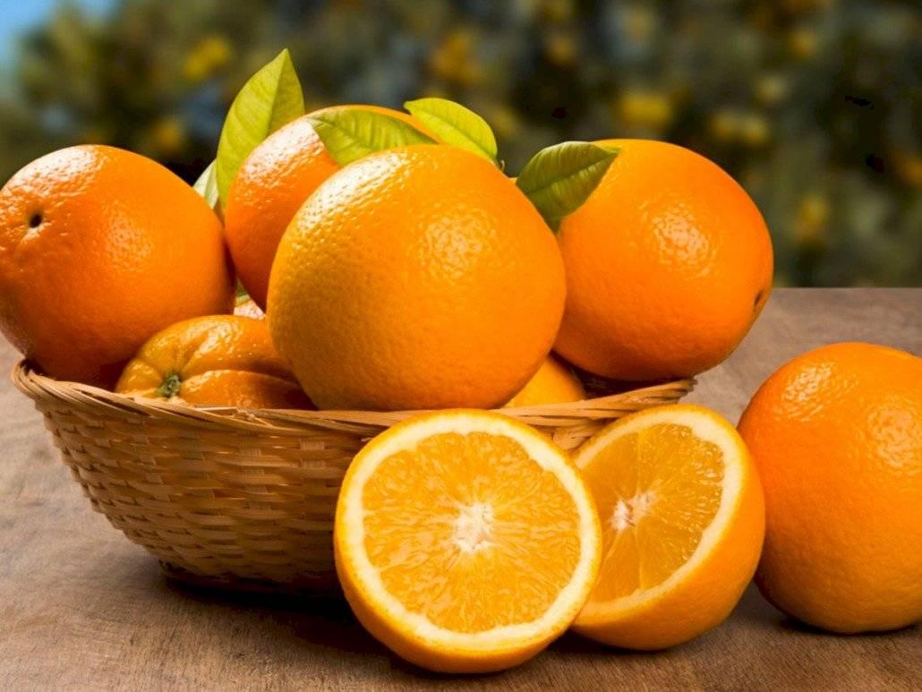 Las naranjas pueden ayudar a reducir la obesidad gracias a una molécula