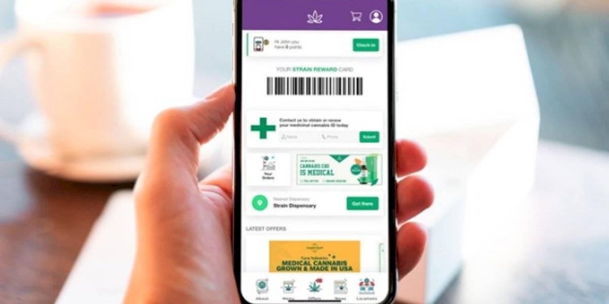 Boricuas revolucionan industria del cannabis medicinal al lanzar aplicación móvil para los pacientes