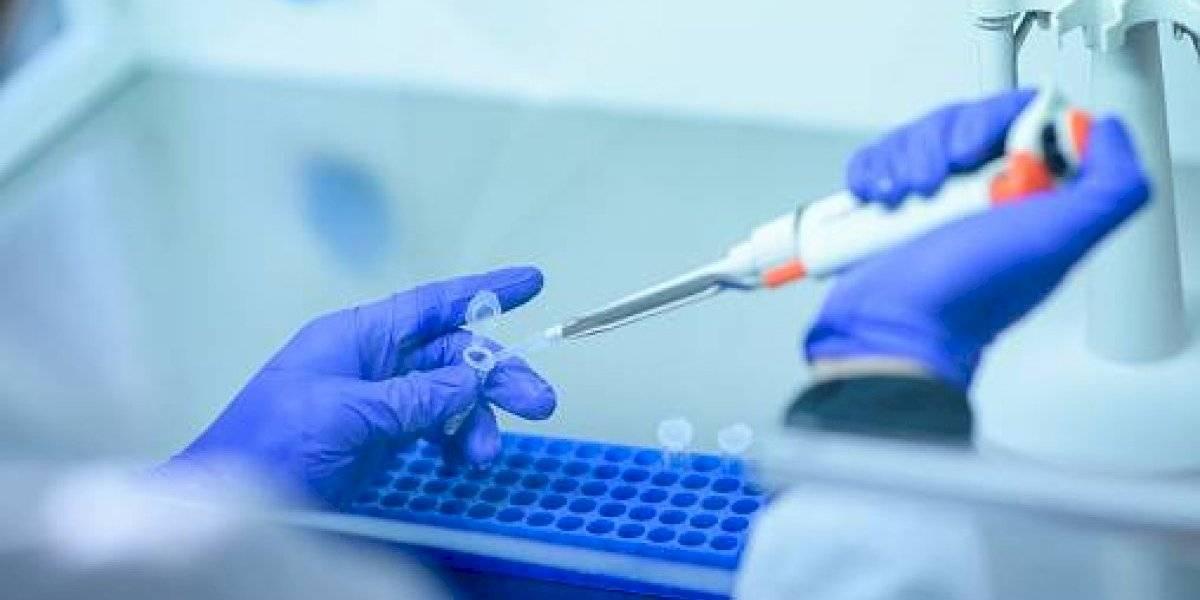 ¡Con paso fuerte! Se desarrollan más anticuerpos que neutralizan el coronavirus