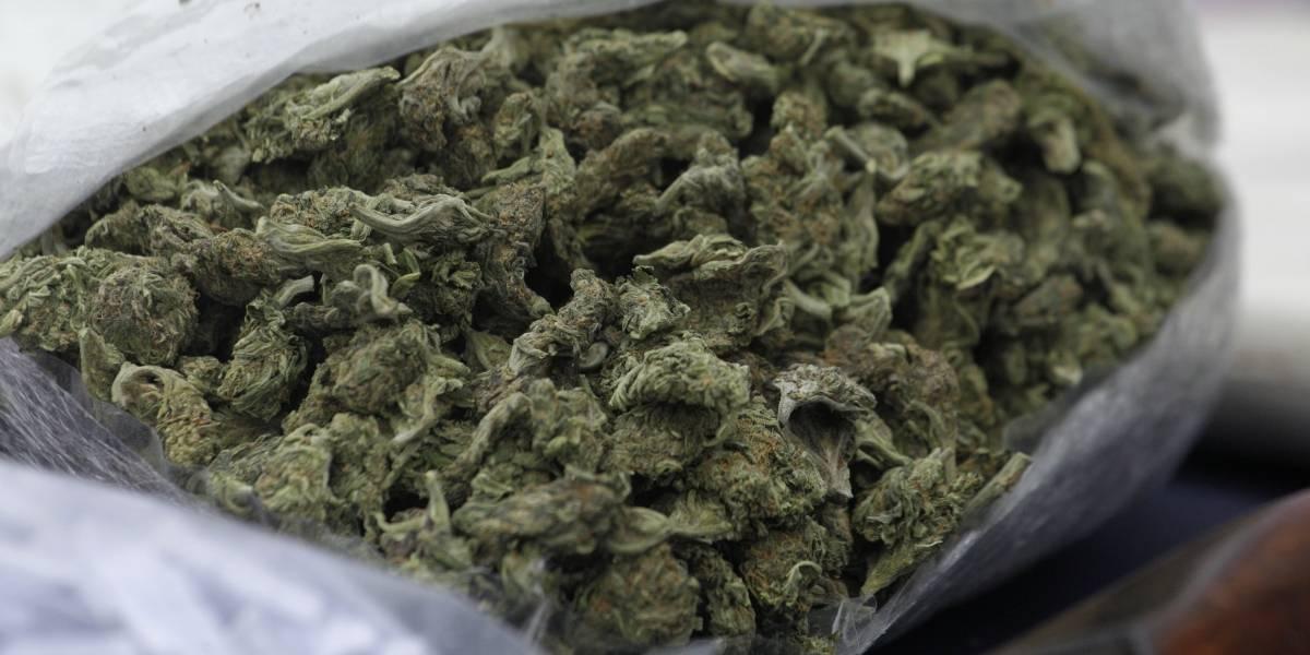 Más de 50 dosis de marihuana: Aduana sorprende a tres pasajeros de avión con droga oculta entre sus ropas