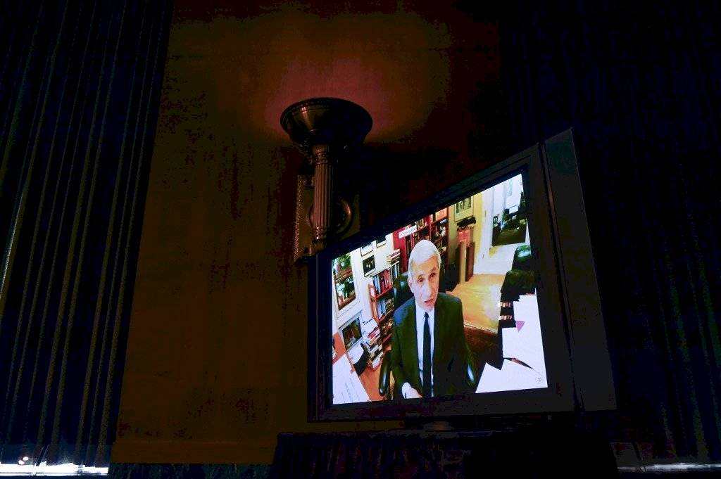 Anthony Fauci en videoconferencia