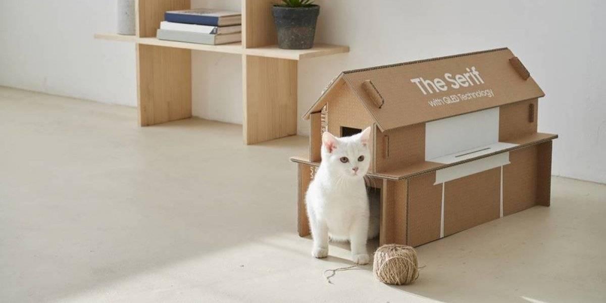 Reciclaje: empaque de televisor se convierte en una casa para gatos