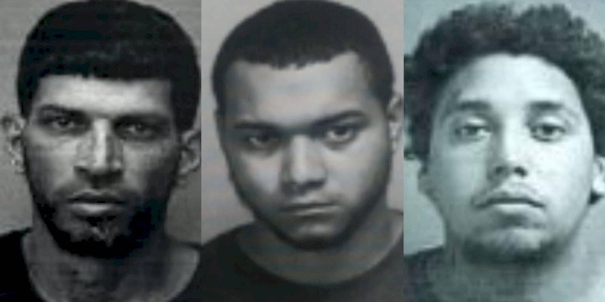 Presos tres hombres por casos de violencia de género en Lares, Corozal y Juncos
