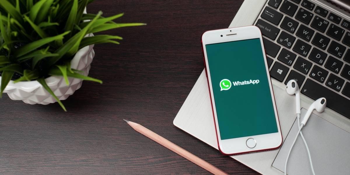 Adiós para siempre: WhatsApp permitirá silenciar grupos y contactos de forma permanente