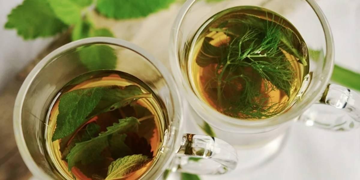 ¡Te sorprenderás! Descubre para qué sirve el té de menta