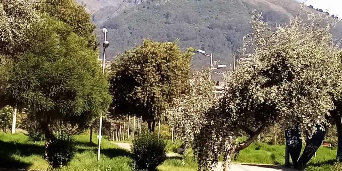 Así luce el parque La Carolina tras la cuarentena en Quito