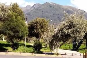 Parque La Carolina en cuarentena