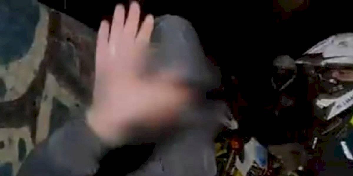 """""""¿Y qué tiene que no tenga mascarilla?"""": Hombre violó la cuarentena y agredió a notero de """"Bienvenidos"""""""