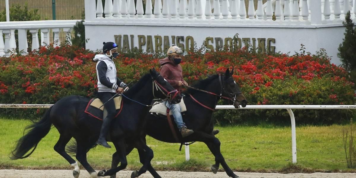 Están desesperados: avalancha de inscritos para regreso de la hípica en el Valparaíso Sporting Club