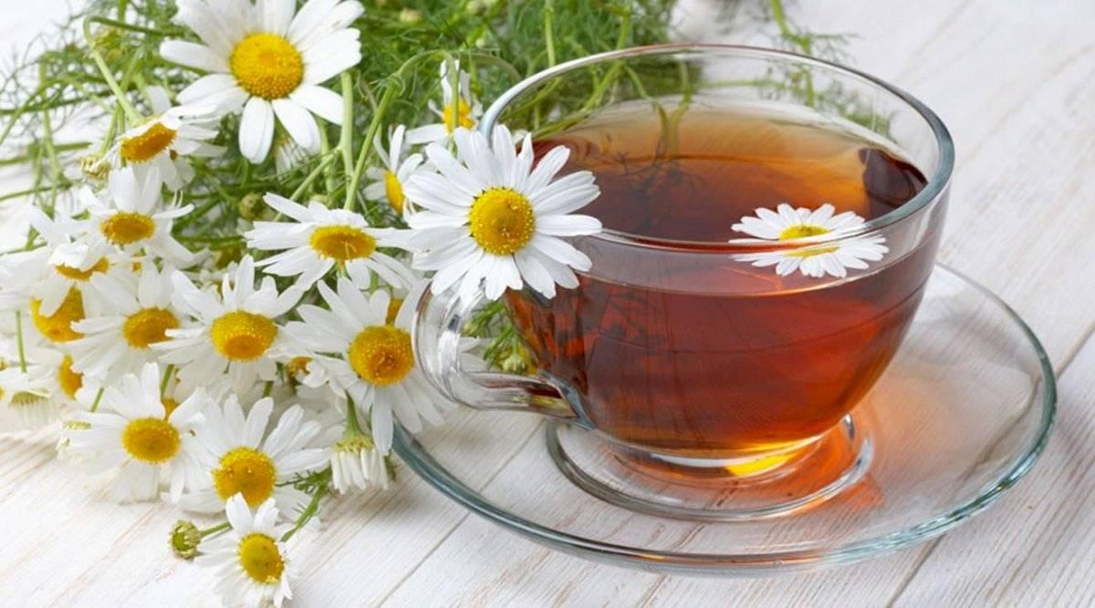 La manzanilla es muy buena especialmente para el dolor de cabeza provocado por estrés o ansiedad