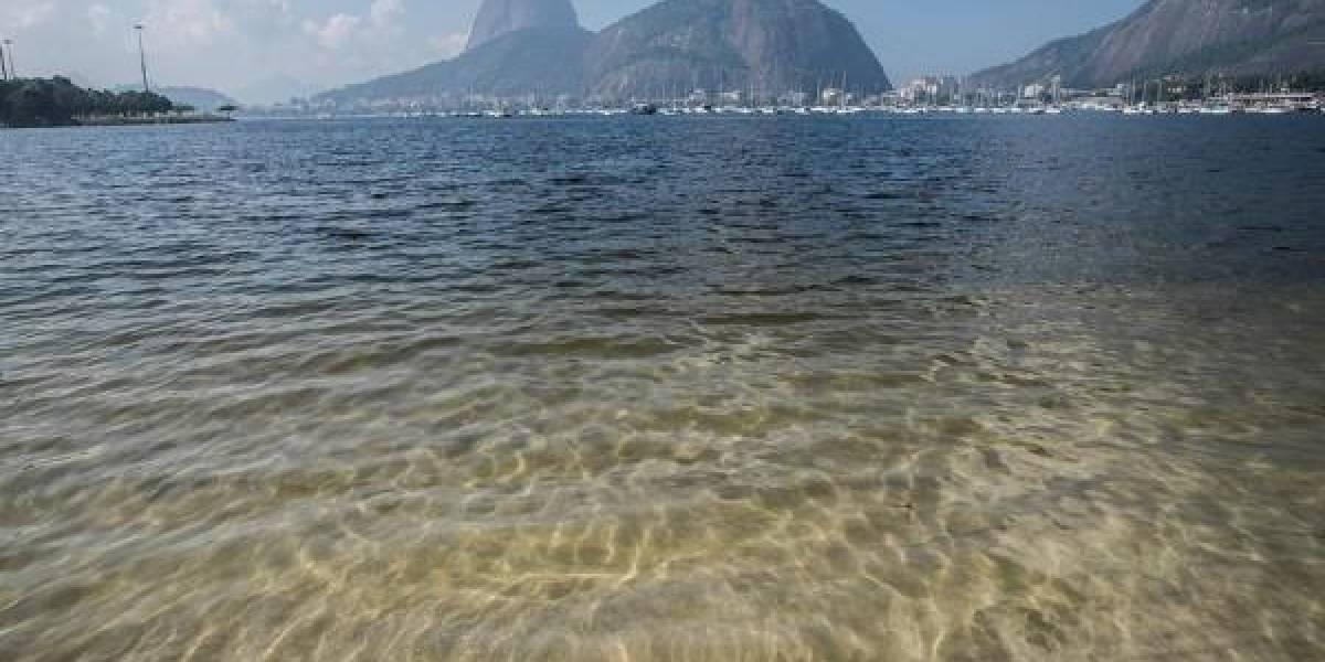 Aguas cristalinas: así luce la bahía de Río de Janeiro con la ausencia de personas