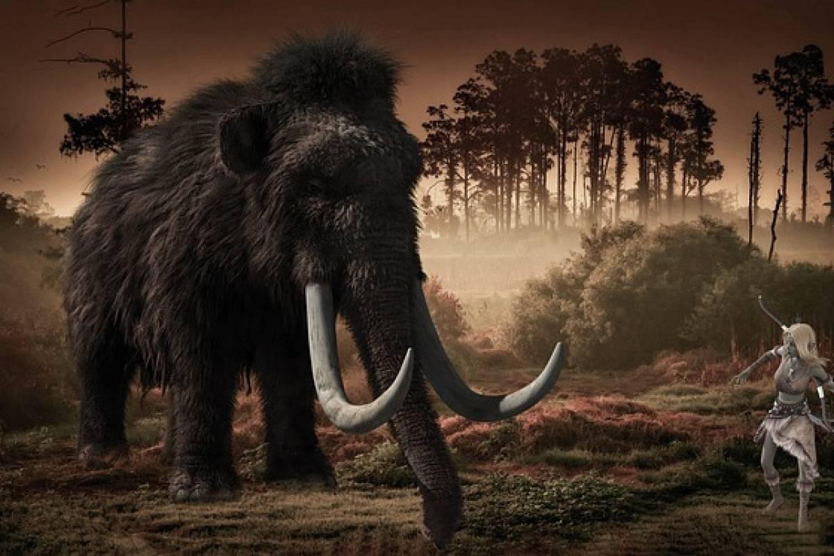 Encuentran restos de más de 60 mamuts en Santa Lucía, México ...