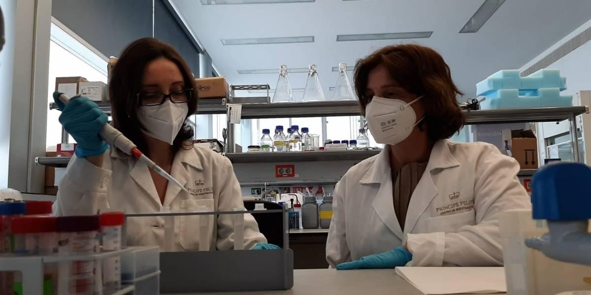 Salud.-Investigadores prueban con éxito en modelos animales una nueva terapia para el cáncer de mama triple negativo