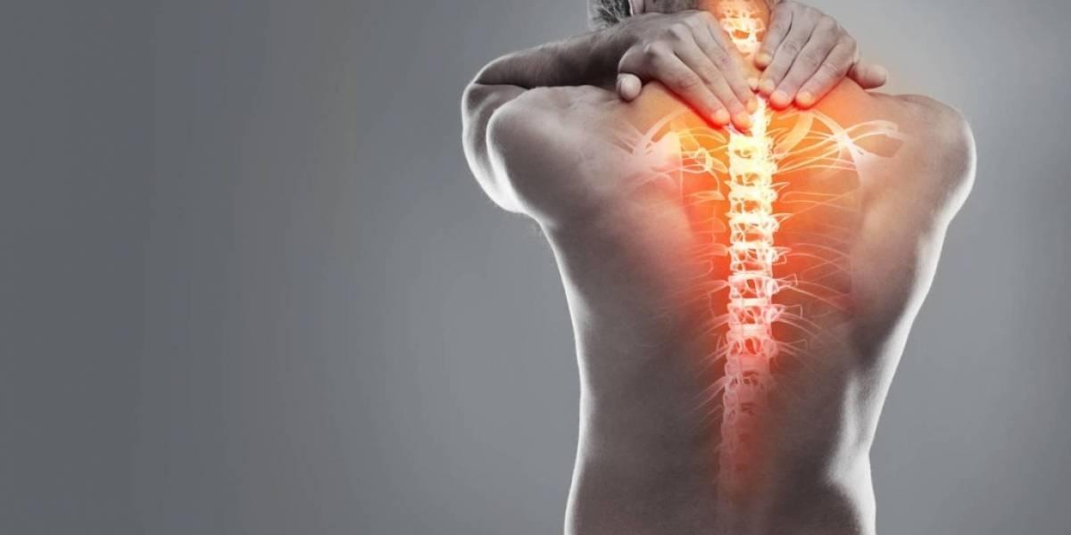 As 5 principais causas da dor nas costas