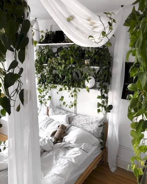 Mira nueve maneras sencillas de decorar espacios pequeños con plantas