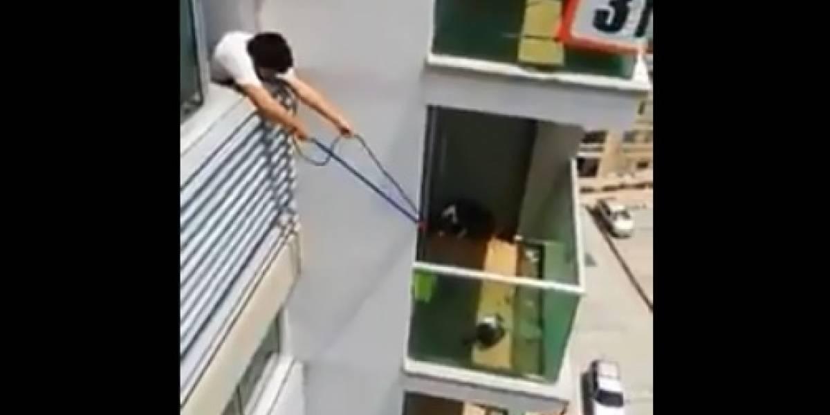 ¡Noble acción! Así alimentaron a un perrito que dejaron abandonado en un balcón