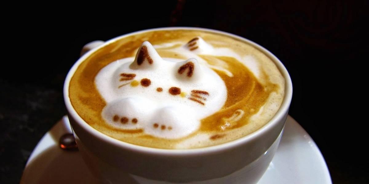 """""""El café nos une"""": así será el festival en línea para aprender trucos de cafetería y que ayudará a los afectados del rubro"""