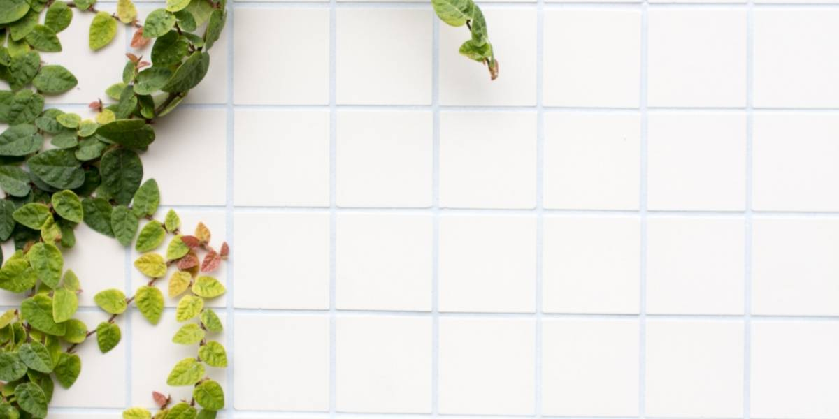A dica simples para deixar o rejunte do azulejo branquinho sem muito esforço
