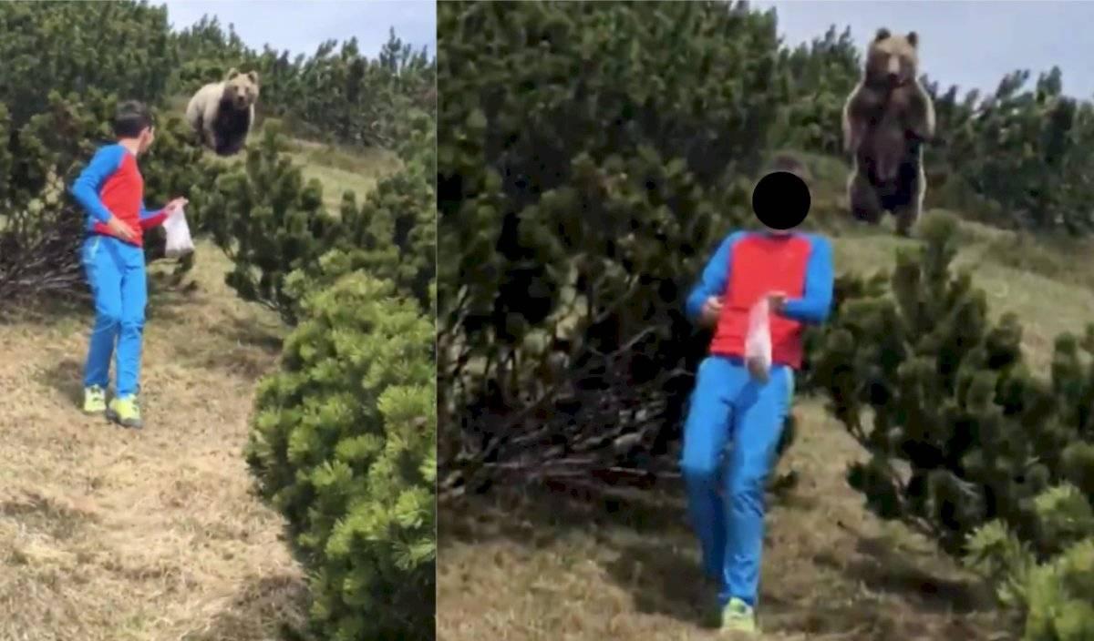 Niño escapa de oso pardo