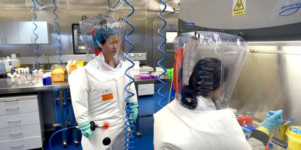 """Viróloga de Wuhan: el coronavirus es """"solo la punta del iceberg"""""""