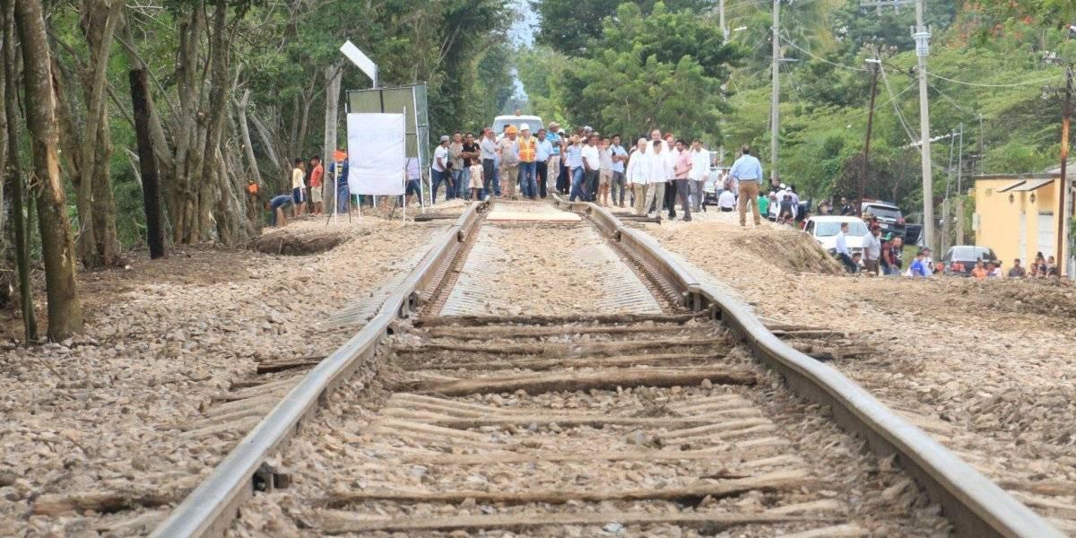 Juez suspende obras del Tren Maya en apoyo a comunidad Ch'ol