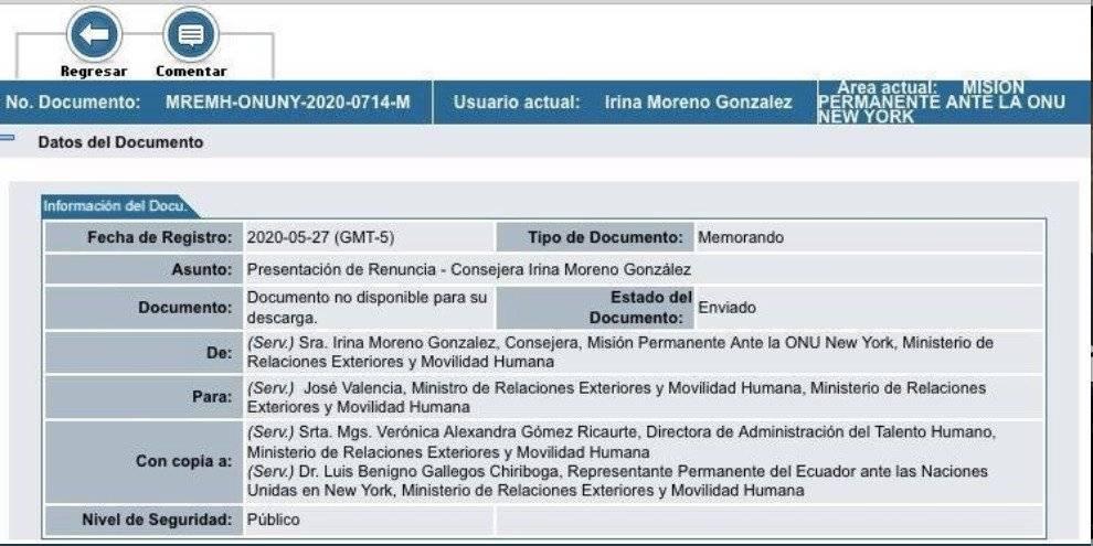 Irina Moreno presentó su renuncia a la consejería del servicio exterior