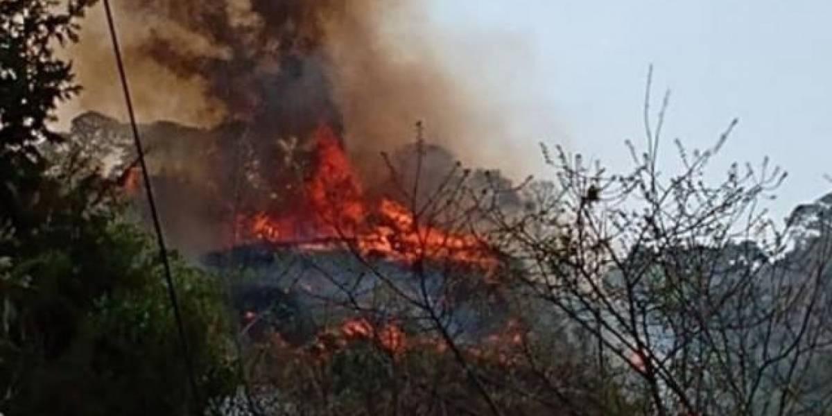 Video en TikTok sale mal: su autora podría ir a prisión 10 años tras incendiar 60 hectáreas de bosque