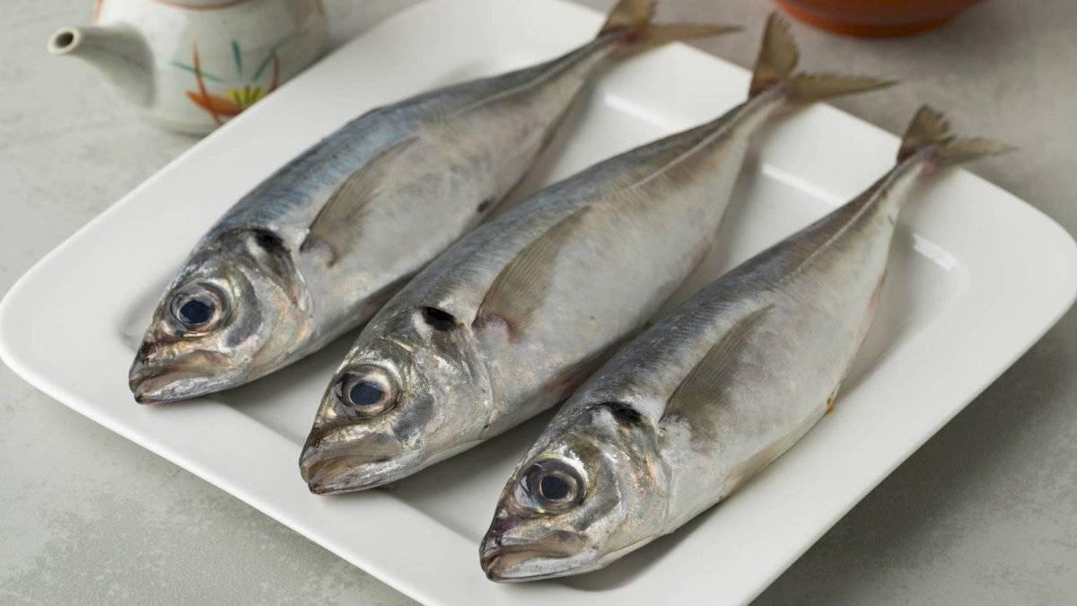 """El pescado es rico en omega 3 considerado el """"alimento"""" del cerebro"""