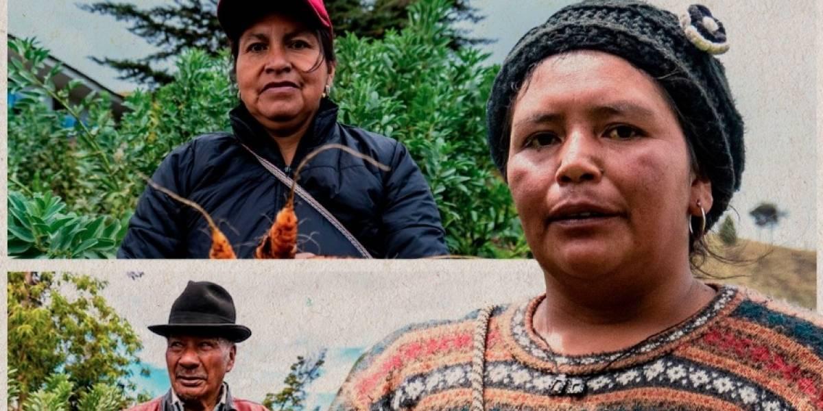 'Contamos', un documental dedicado a la lucha de los campesinos colombianos