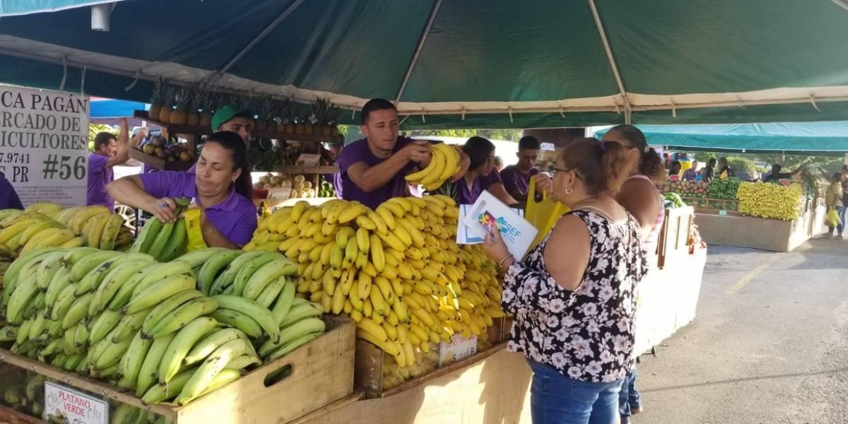 Mercados familiares reiniciarán en modo servicarro