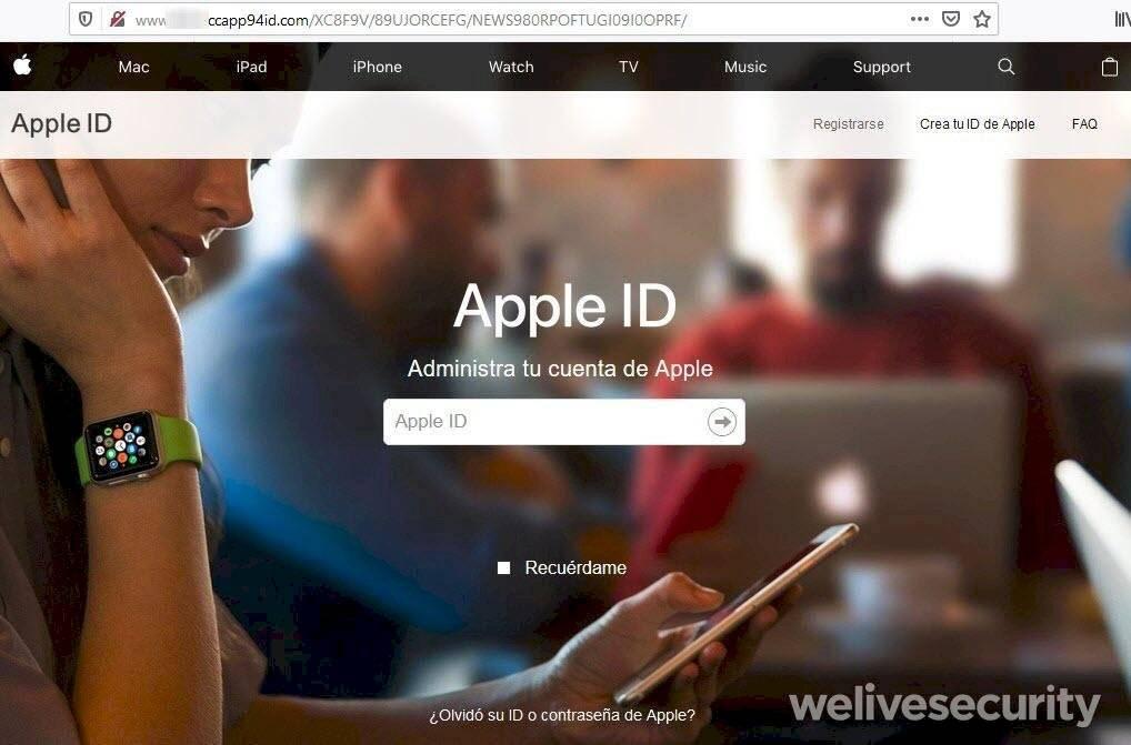 No site falso, usuário cede informações de login para os criminosos Reprodução