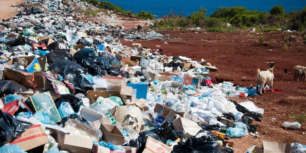 Cada año, ocho millones de toneladas de plástico terminan en el océano: empresa de iluminación hace llamado a modificar los empaques