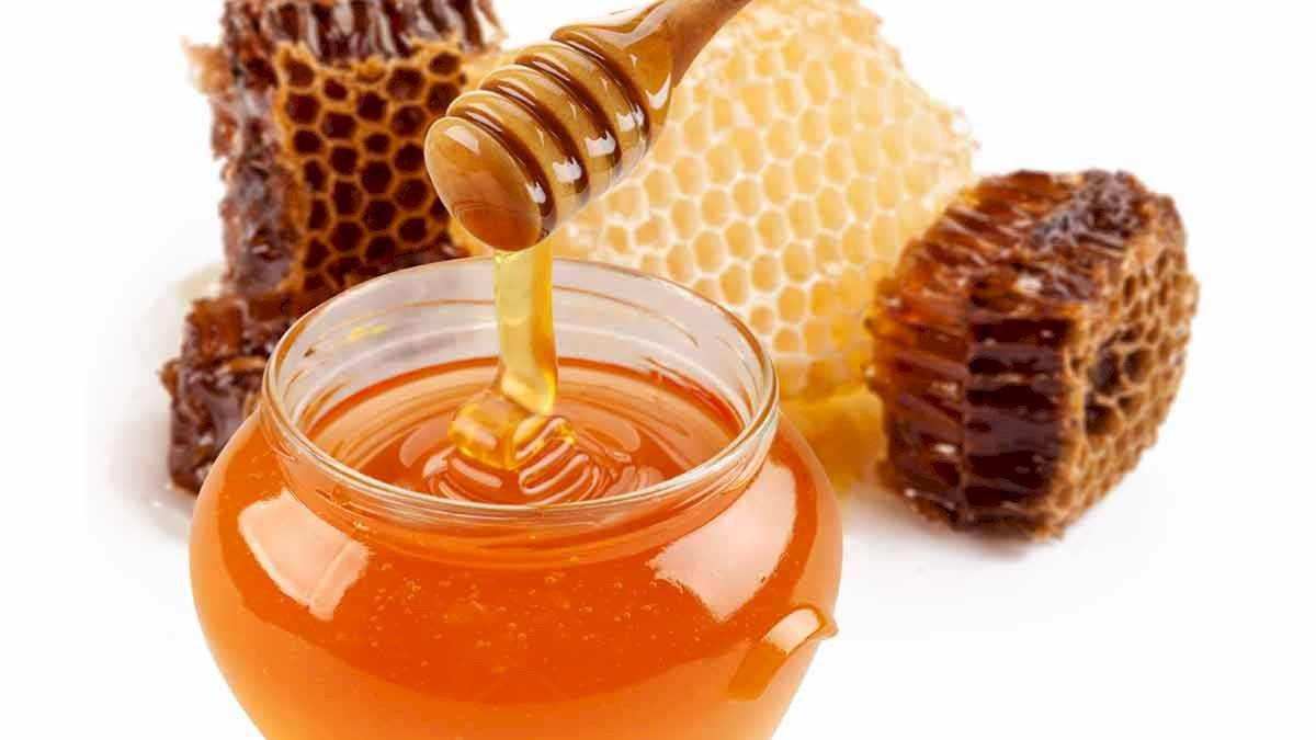 La miel ayuda a combatir las infecciones