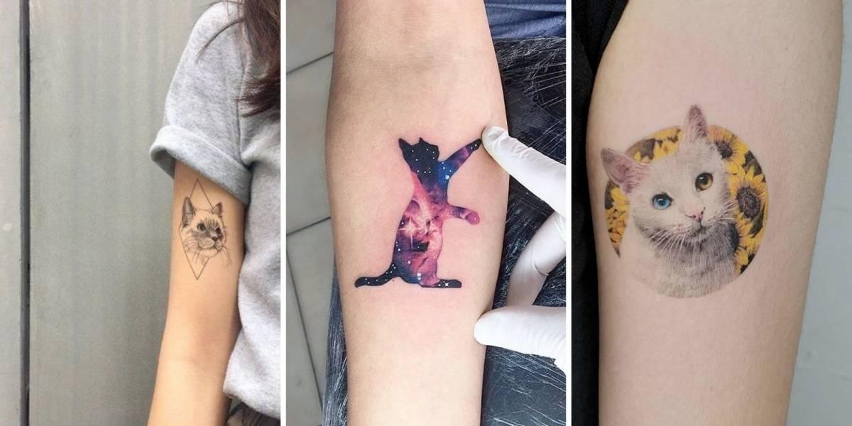 Tatuagem de gatinhos: confira 10 desenhos para se inspirar