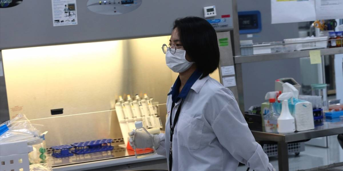 El nuevo tratamiento contra el coronavirus que probarán en humanos y llena de esperanza