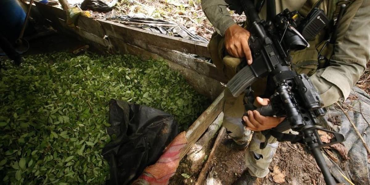 Cárteles mexicanos se fortalecen en Colombia durante la pandemia