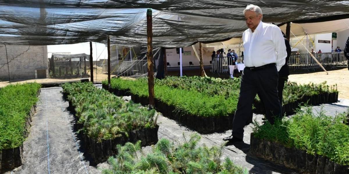 Capital: Mario Molina recomienda el uso de cubrebocas