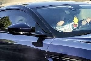 ¡CONFIRMADO! Megan Fox tiene nuevo novio y así lo demostró