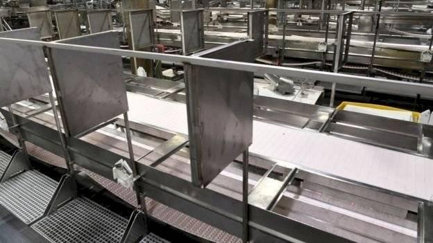 Nuevo brote de COVID-19 en Alemania puso en cuarentena a miles