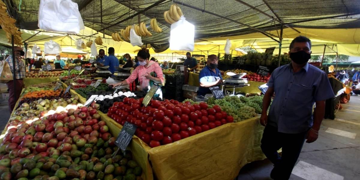 Siguen subiendo los precios: frutas y verduras de mayor consumo en ferias libres aumentaron un 3,06% en dos semanas