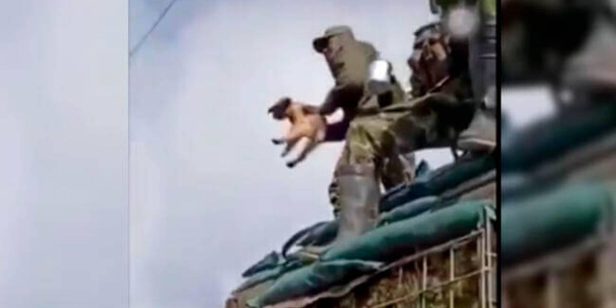 Abren investigación a soldado por lanzar un perro al vacío en Nariño